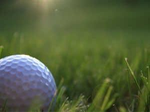 Golf ball in the long grass
