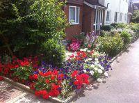 Splashes of Colour in gardens