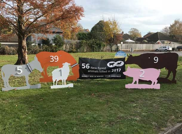 56 New Forest Animals Killed In 2017