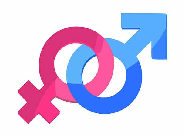 Gender Win