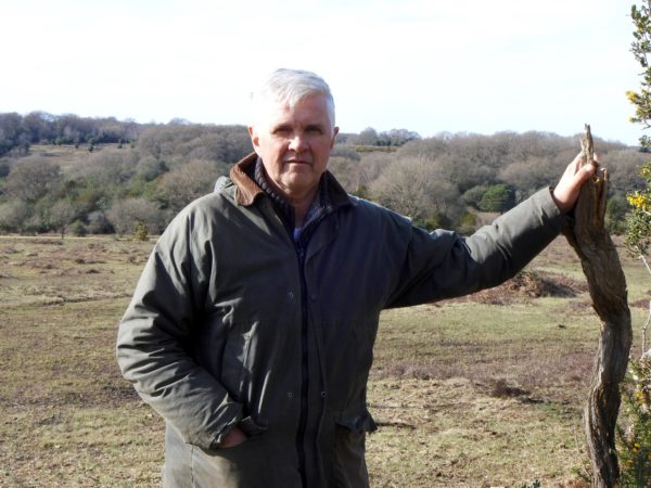 Closure Of New Forest Car Parks...